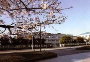 宮崎大学附属中学校合唱部
