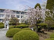 野沢北高校2012年卒5組