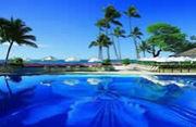 楽園★ハワイ