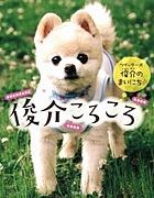 俊介くん/Twitter犬