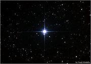 迷ったら星に聞こう!