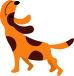 九州の犬好き