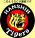 Musician of Tigers Fan