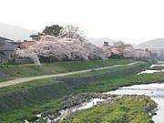 平日休み同盟  京都