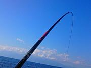 フカセ釣りin 種子島