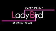 毎週金曜日 LADY BIRD