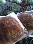 黒松(草月)