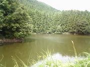 長野市弁天池