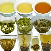 中国茶 ダイスキ ☆゚