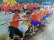 オレンジ組(柏陽1999年度体育祭)
