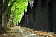 松原小学校62年生まれの会