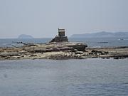 佐久島〜島を出て、島を見つめる