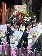 *Doll☆Elements*(どるえれ)