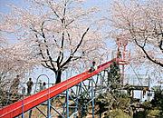 岩沼 『朝日山公園』