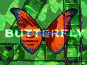Butterfly (DDR)
