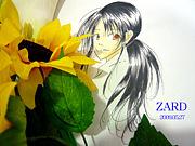 Top Secret/ZARD
