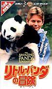 リトル・パンダの冒険