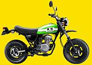 沖縄の原付き乗り バイク