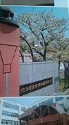 北海道室蘭東翔高等学校