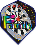 ダーツ【TeamFamily】