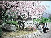 大阪教育大学2012 新入生!