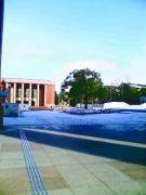 龍谷大学 谷ゼミ