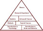 SUA Psychologic Society