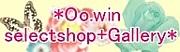 *Oo.win selectshop+Gallery*