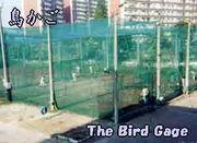 名古屋高校硬式野球部