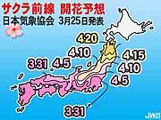神田川deお花見'08