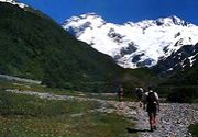 NZワーホリ 1997-1998