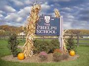 The Phelps School