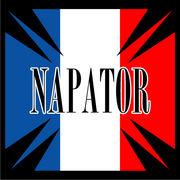 ナパトール(NAPATOR)