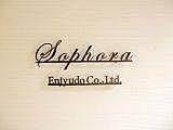Sophora(ソフォラ)