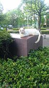 のんびりお散歩&写真☆福岡近郊