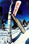 SUN snowboards