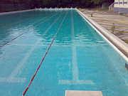 名古屋商科大学水泳部
