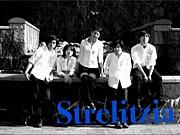 Strelitzia〜蝶華〜