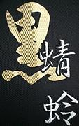 野球チーム黒蜻蛉