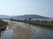・八幡市の背割堤