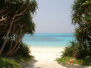 沖縄で楽しく過ごそう!!