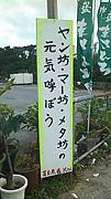 Maehara Underground