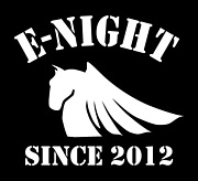 The E-NIGHT