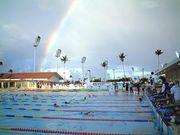 競泳(総合)수영