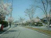 桜ヶ丘ハイツ(桜+皐+桂)可児