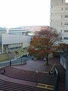 大阪芸術大学2008年度入学生