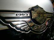 H-D 100th Anniversary