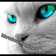 Marvelous Keeping 5★