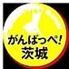 ★茨城最高オフ★