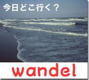 wandel+murren